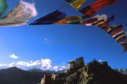 Rupshu Valley Trek